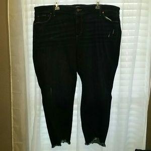 Loft 26 Modern Skinny Jeans